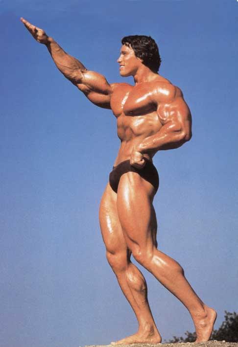 schwarzenegger fake Arnold nude gay