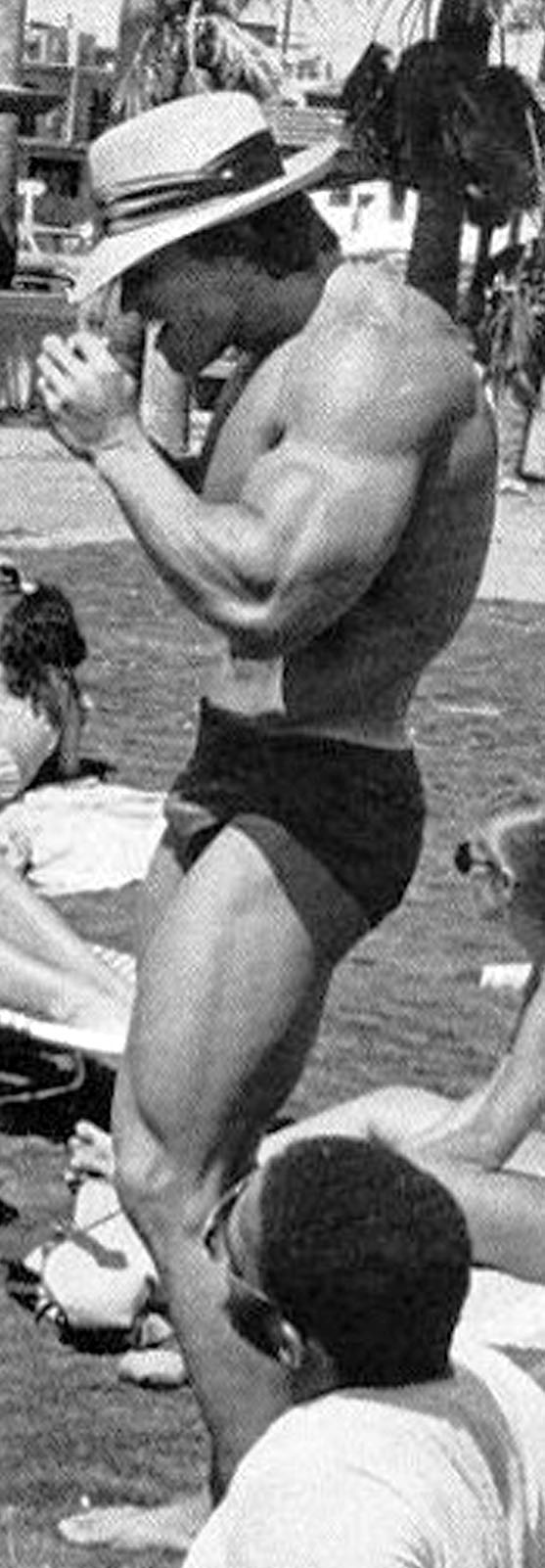 ... 15 :: SCHWARZENEGGER.IT :: Arnold Schwarzenegger Italian Fan Site Arnold Schwarzenegger