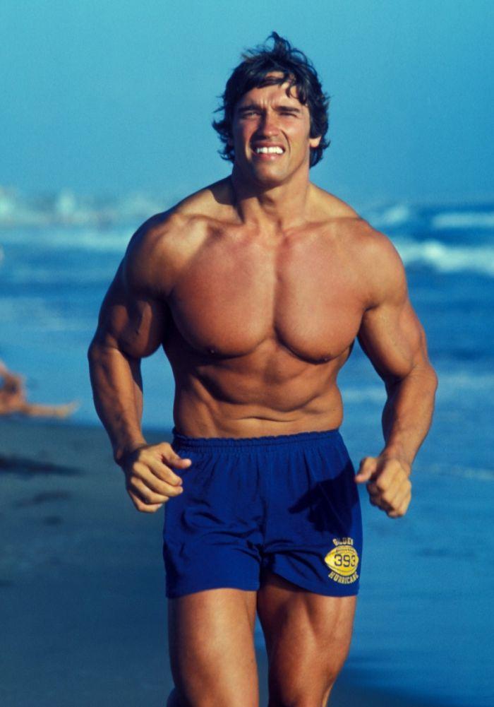 MUSCLE GALLERY 17 :: SCHWARZENEGGER.IT :: Arnold