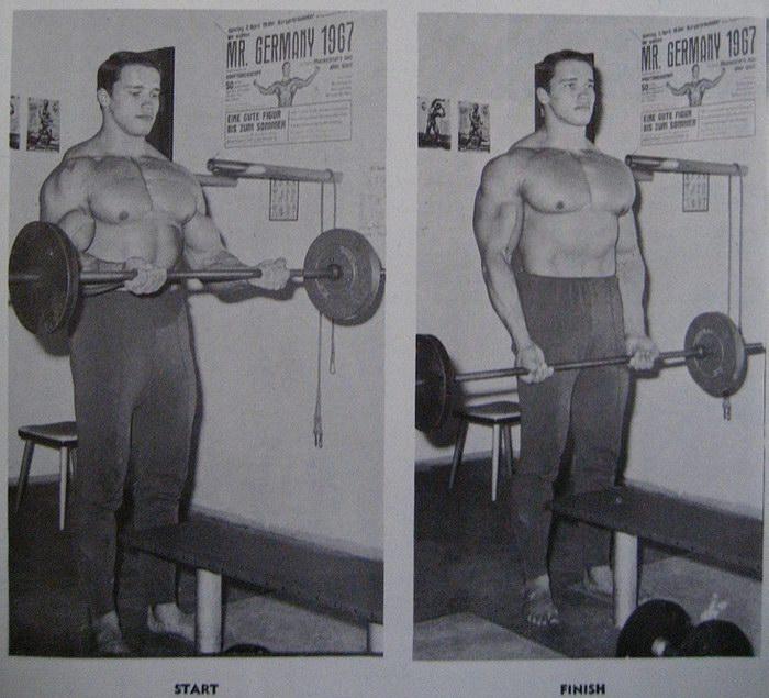 ... 17 :: SCHWARZENEGG... Arnold Schwarzenegger
