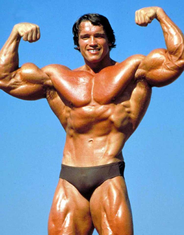 18 :: SCHWARZENEGGER.IT :: Arnold Schwarzenegger Italian Fan Site