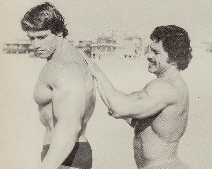 Muscle Gallery  Schwarzenegger It Arnold Schwarzenegger Italian Fan Site