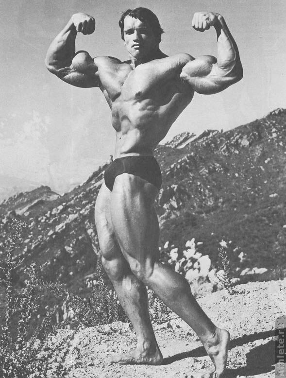 Arnold schwarzenegger steroid stack for beginners. Demadex