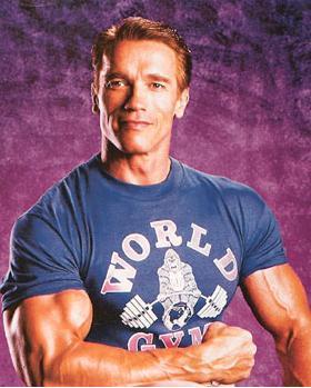 arnold schwarzenegger muscle gallery