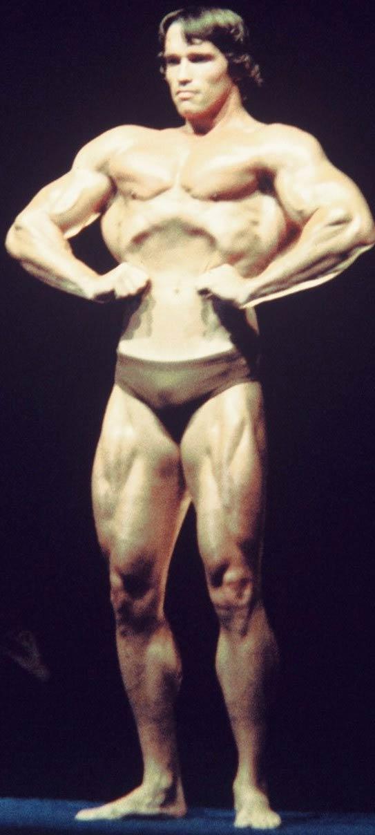 MUSCLE GALLERY 5 :: SCHWARZENEGGER.IT :: Arnold ... Arnold Schwarzenegger