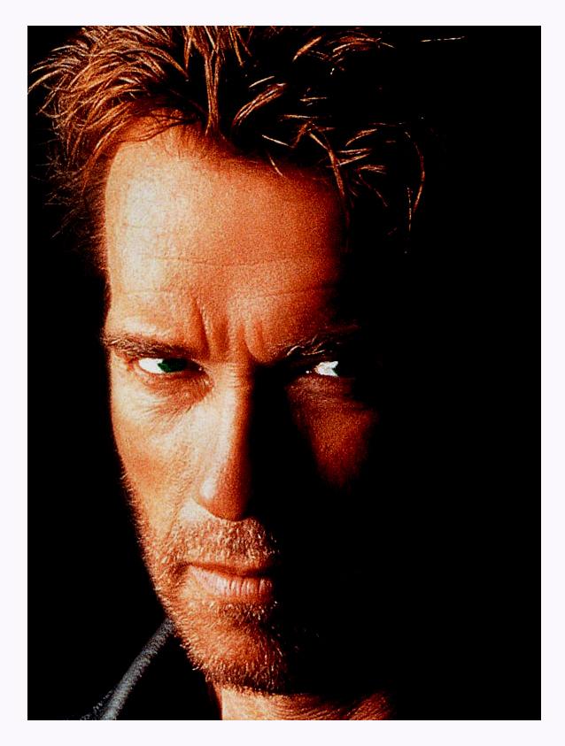 ... SCHWARZENEGGER.IT :: Arnold Schwarzenegger Italian Fan Site