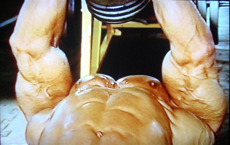 LOU FERRIGNO : Stars of Bodybuilding   MRO Fansite   History of Mr